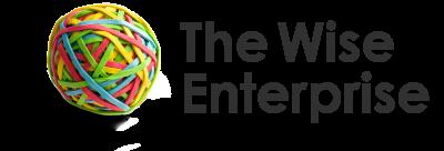 The Wise Enterprise Book